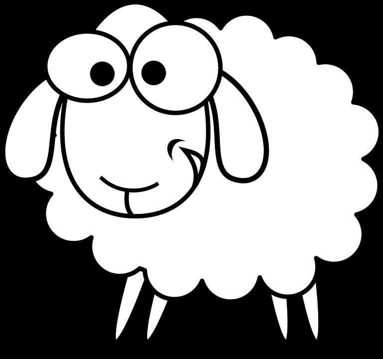 sheep-161630_960_720